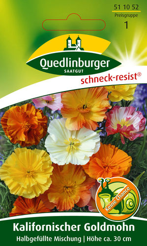 Kalifornischer Goldmohn